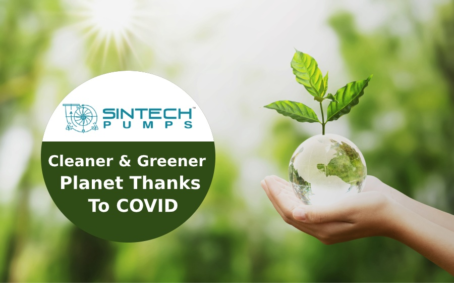 cleaner-and-greener-planet-thank-you-covid