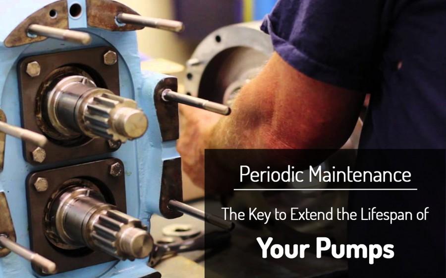 Pump Repair & Maintenance | Centrifugal Pumps | Sintech Pumps India